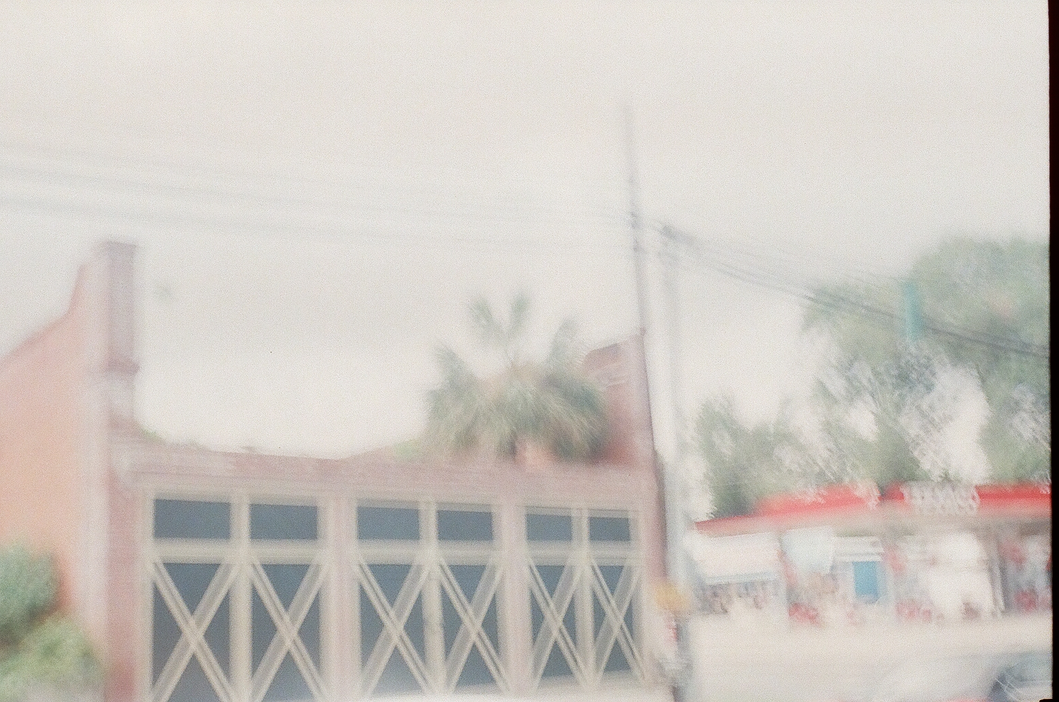 An overexposed, blurry photo of a storefront with a palm tree coming out of it